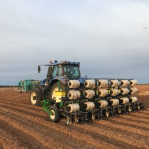 Norseman Planter | Techni-Plant FL | Hemp Planter | Precision Planter with Plastic | OneCrop Plastic Tape Planter | CBD Hemp Plastic Seeder