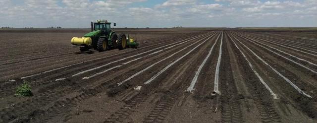 Techni-Plant Planting Single Skip Semi- Irrigated Cotton