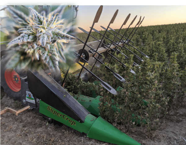 SuperCleanCut Hemp Harvester | CBD Hemp Harvester | SuperCrop | Hemp Draper Header | Hemp Header | Bish Enterprises | Formation Ag