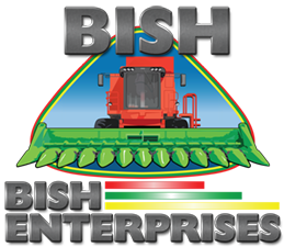 BISH_sq_small